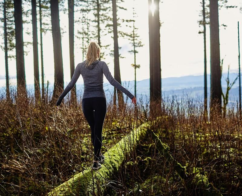 Wat ziet u: de bomen, het bos of het beste ICT-landschap?
