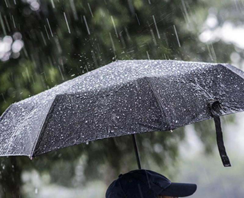 Welke paraplu wordt er binnen jouw bedrijf gebruikt?